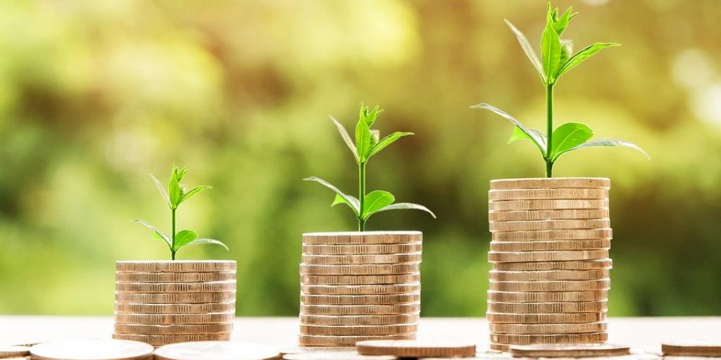 Conceptos básicos de la inversión